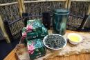 北山四季春茶