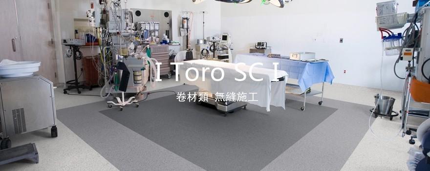Toro SC.jpg