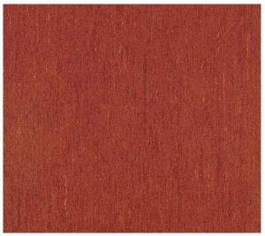3242 869 耐磨木質地板