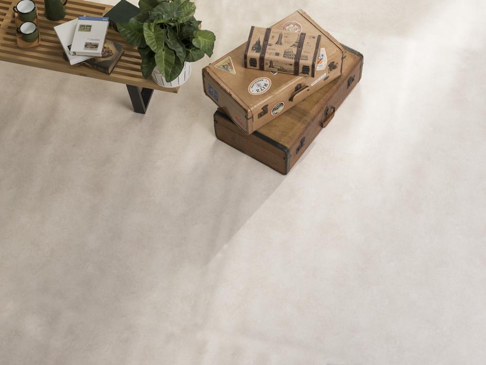 217 淺色木紋地板