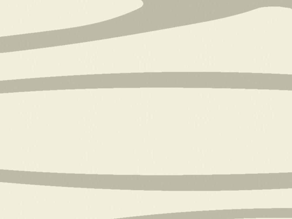 3942058 牆毯