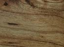 Winton帝寶系列V 塑膠地磚 塑膠地板  L60501