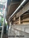 日式建築白蟻防治