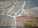 黃木紋亂片