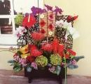 春節盆花 (8)
