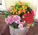 春節盆花 (9)