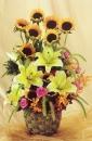 教師節盆花 (2)