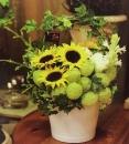 教師節盆花 (4)