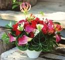 盆花 (10)