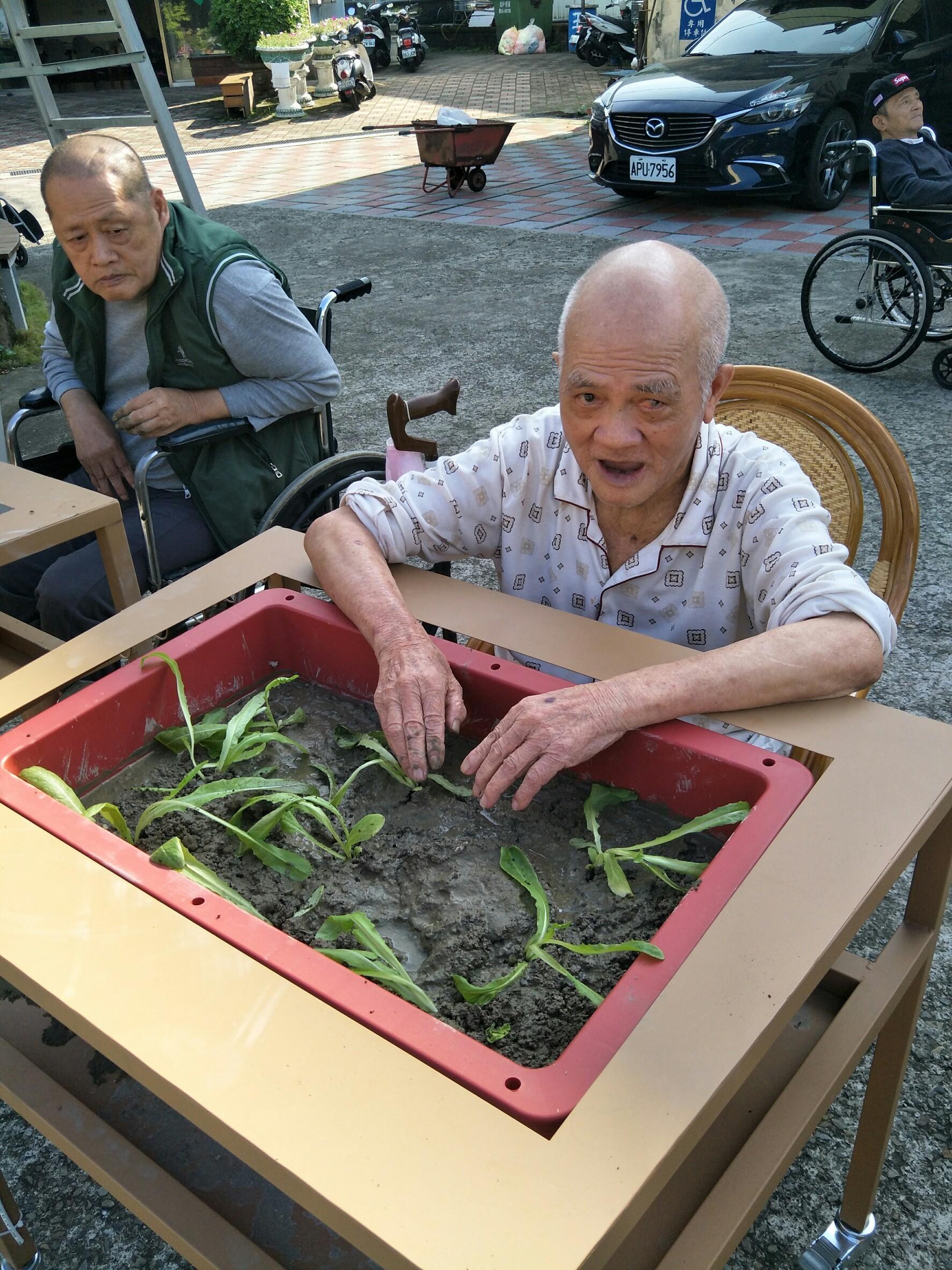 20181121 園藝菜圃活動_181121_0022.jpg