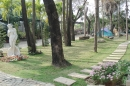 高雄園藝植樹