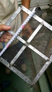 不銹鋼過濾網