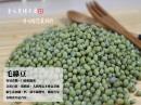 毛綠豆-500公克 / 60元