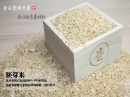 品選胚芽米(又稱半糙米)