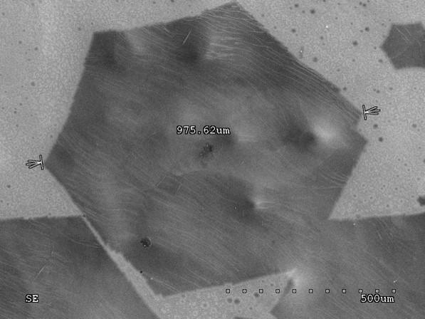 單層/多層石墨烯 Monolayer graphene / multilayer graphene