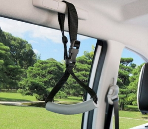 Vehicle Entry Exit Strap 169