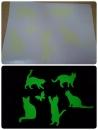 客製化夜光貼紙