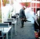 專業消毒除蟲病媒防治