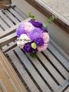 M017-紫色愛戀