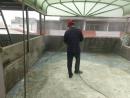 屋頂防水翻修-3.底油施作