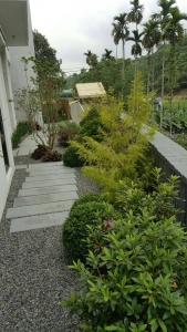 庭園造景,景觀設計,綠化工程規劃設計施工_13