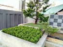 庭園造景,景觀設計,綠化工程規劃設計施工_2