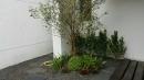 庭園造景,景觀設計,綠化工程規劃設計施工_5