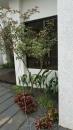 庭園造景,景觀設計,綠化工程規劃設計施工_11