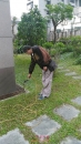 花圃除白蟻消毒除蟲