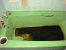 高雄輕洗水管浴缸汙泥