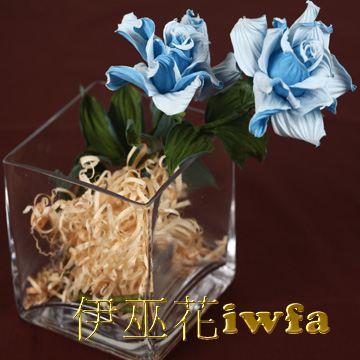 小盆花—俏麗 寶藍色