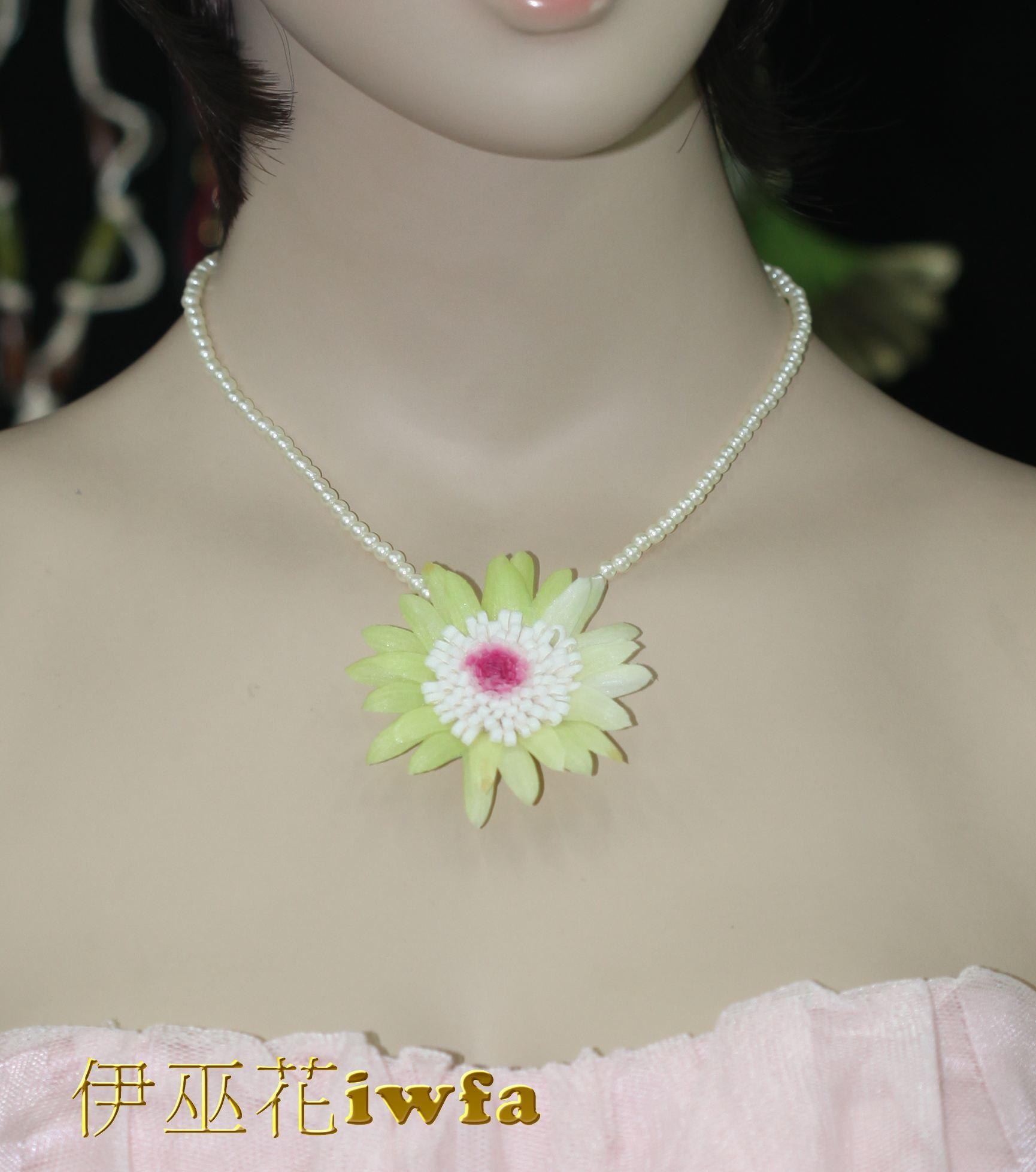 亮珠--活潑的小雛菊