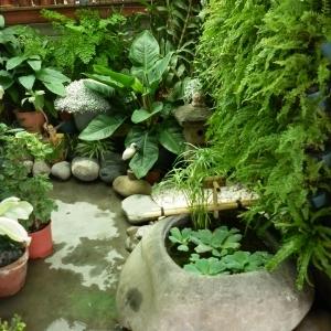 日式流水造景設計