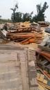 彰化廢木材清運 (2)