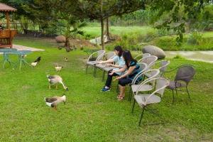 金石咖啡休閒農場3