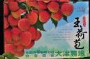 大津休閒農場5