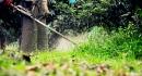 乾坤有機生態休閒農場32