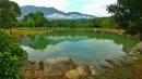 仰山休閒農場5