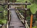 大武山休閒農場-到天亮森林木棧到