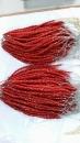紅珊瑚 (3)