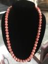 紅珊瑚 (9)