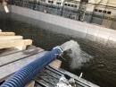 台北水車載自來水工業用水海水運送