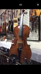捷克小提琴