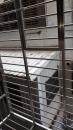 台北市鐵窗更新安裝、鐵工特殊訂製 (6)