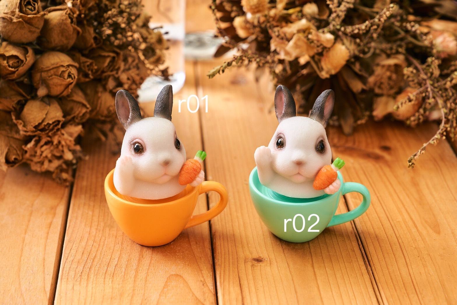 兔子編號.jpg