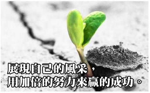 語錄 (2).jpg