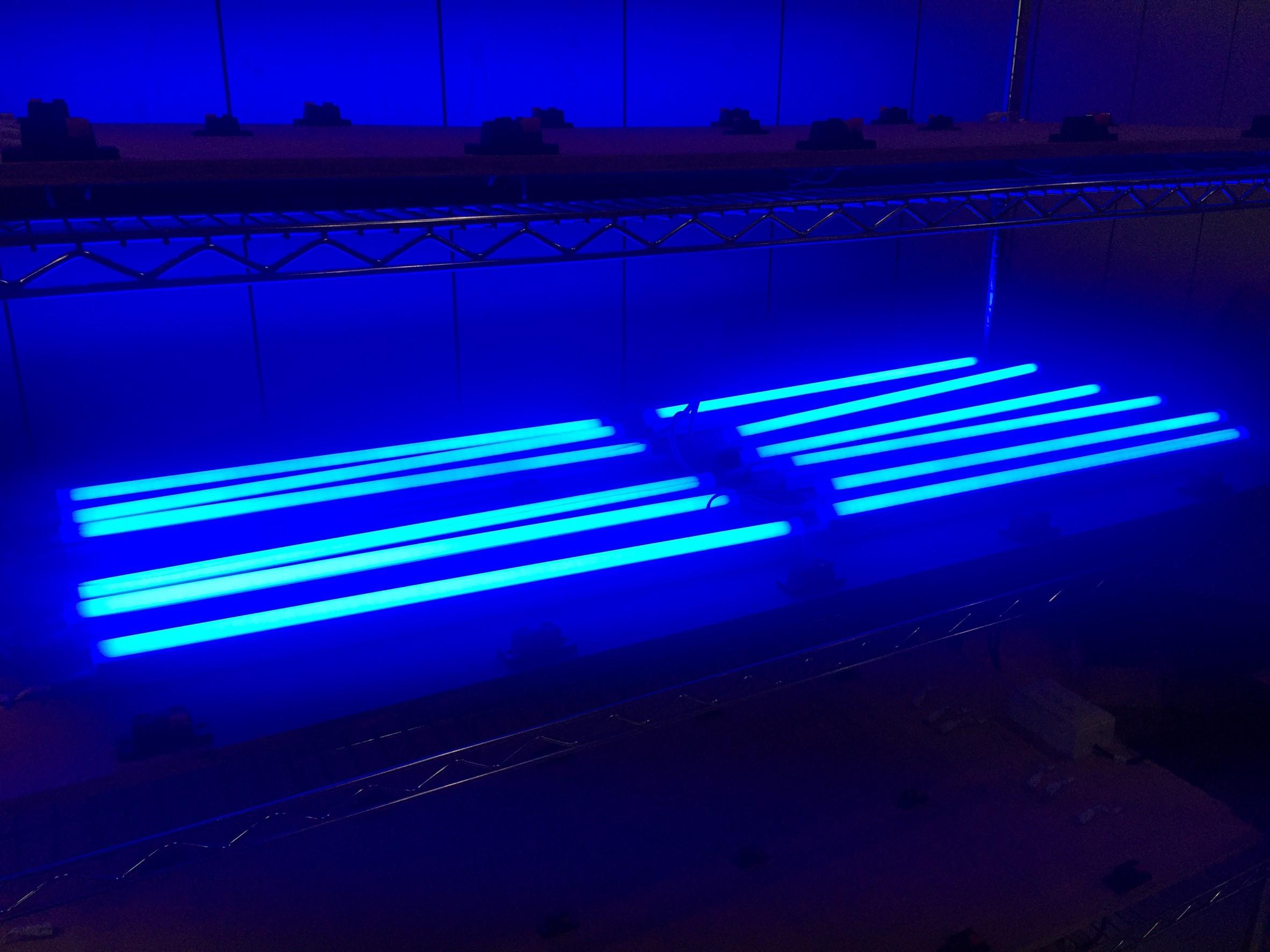 T5藍光 20160419_170209_0007