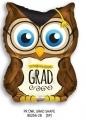 型號 : 85256-28 28吋 OWL 畢業貓頭鷹