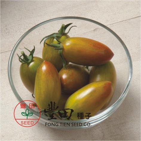 豐田203橢長型條紋蕃茄(綠帶紅條紋)
