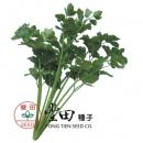 玉香青菜芹菜管